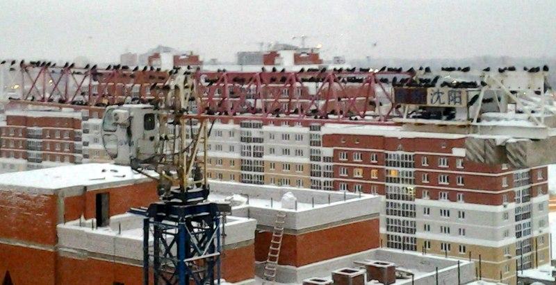 Продажа однокомнатной квартиры в новостройке Елецкое шоссе, 3